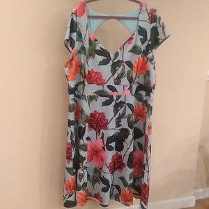 Plus-Size, Size 26 vintage style floral dress